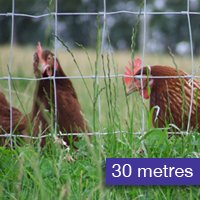 Poultry Fence 30metres